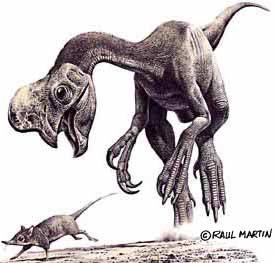 Encuentran huevos fósiles en el interior de un oviraptor
